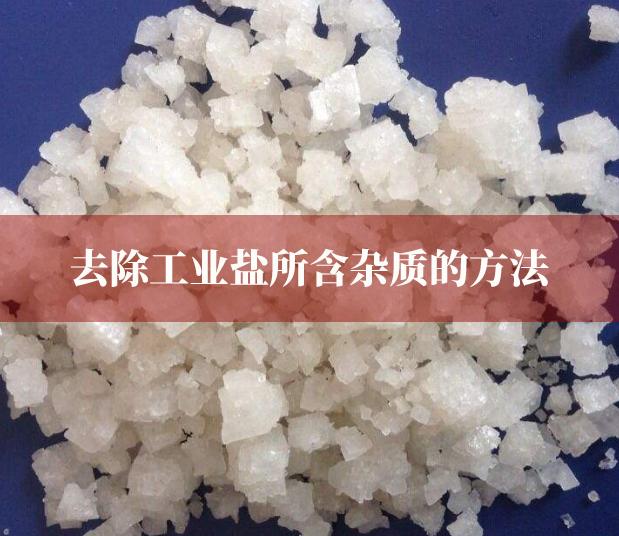 去除工业盐所含杂质的方法